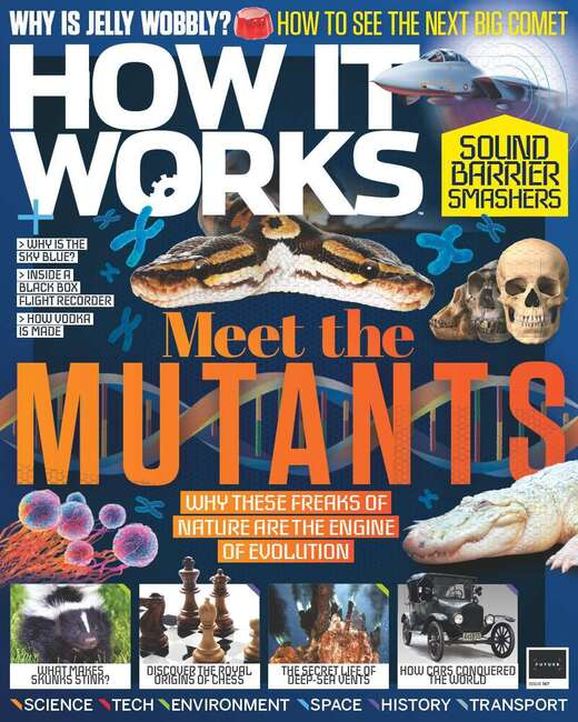 How It Works Issue 146